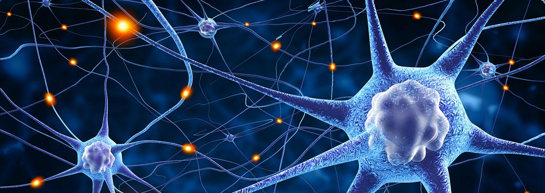 Neurocognitive Examinations